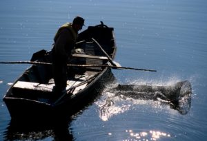 © D.DROUET-pêcheur Montjean