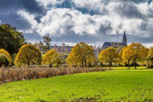 Champs de La Chapelle-Saint-Florent ©D.Drouet