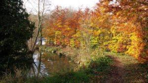 Site de Gévrise en automne à Botz-en-mauges