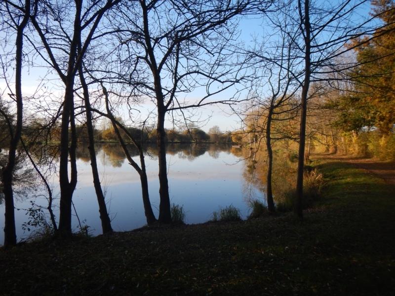 Aire de loisirs et de pêche de la Grand Fosse au Mesnil-en-vallée