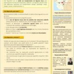 Lettre d'info n°1 - Janvier 2017 - Projet de légumerie à Mauges-sur-Loire