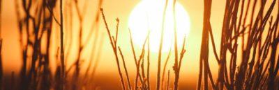 soleil - jeremy-bishop-184462-unsplash